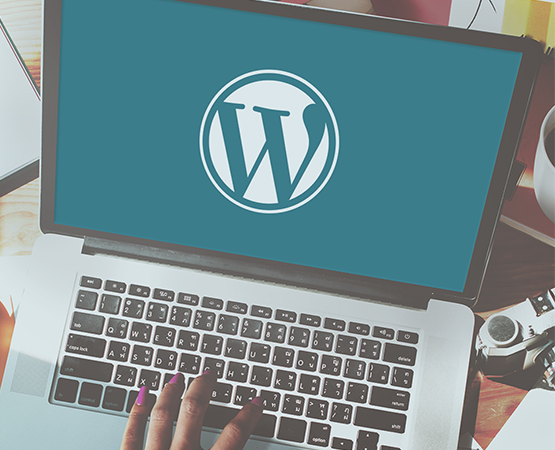 Benefits of Hiring Expert Wordpress Developer